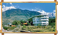 hotel silver oaks palampur